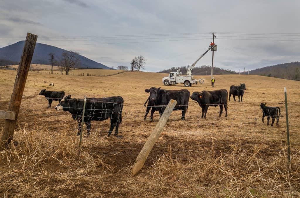 Kentucky's Electric Co-Ops Urge Change To Farm Bill