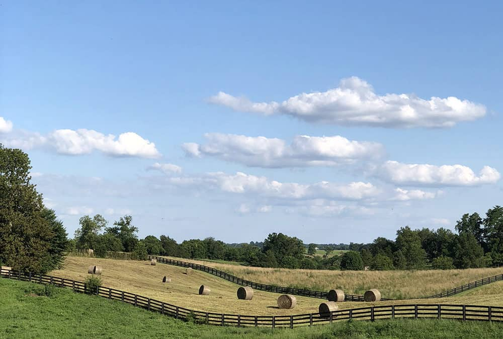 100 years and counting for Kentucky Farm Bureau