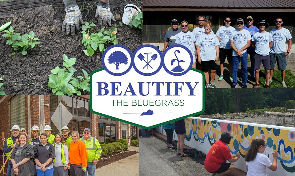 Time to Beautify the Bluegrass