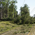 In a Wild Weather Year, Co-op Crews Came Together to Restore Power