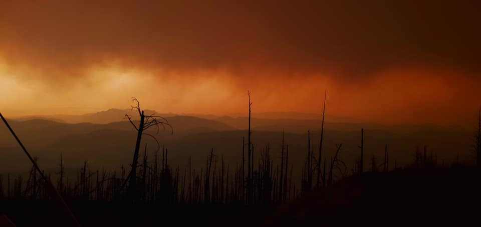 Co-ops Apply Lessons Learned From Catastrophic Wildfires